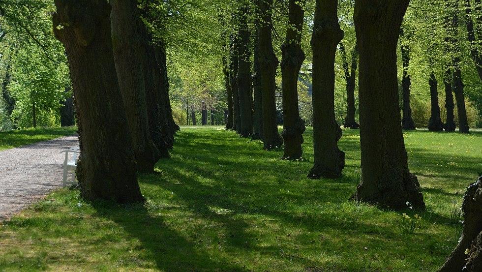 Hippodrom - Historische Reitbahn im Schlossgarten, © Tourismusverband Mecklenburg-Schwerin